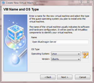 VM Name and OS Type